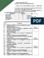 Aplicatie Practica Cascaval Andrei