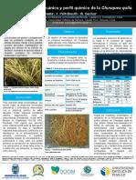 Potencial nanomecánico y perfil químico_Poster