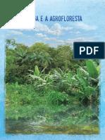 Agua Agroflorestas