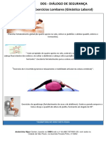 DDS Exercicios lombares