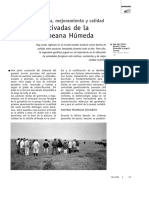 35-pasturas_cultivadas_pampeanas