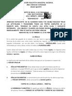 NATURALES PRIMER PERIODO, PEDRO 5 (1)