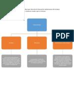 Hacer Un Mapa Conceptual Que Describa La Formación Embrionaria Del Sistema Urinario y Los Diferentes Sistemas Renales Que Se Forman