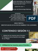 S1. Teoria Entomología Aplicada