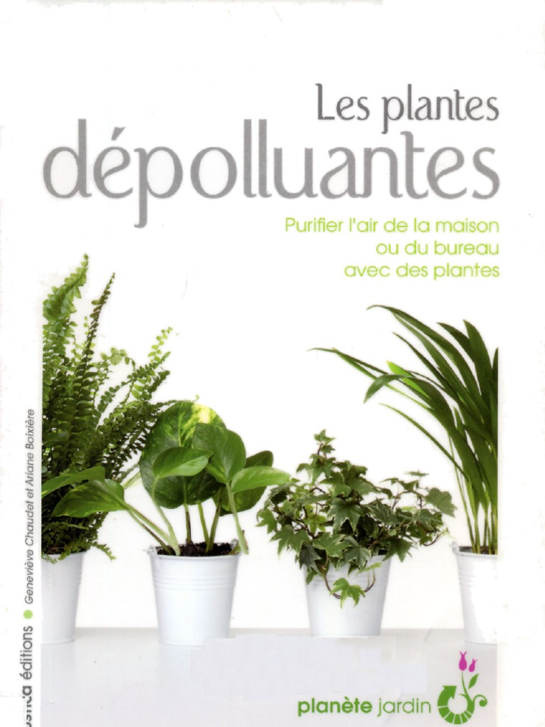 les plantes d polluantes. Black Bedroom Furniture Sets. Home Design Ideas