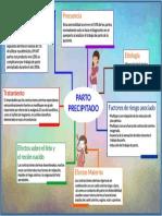 PARTO_PRECIPITADO