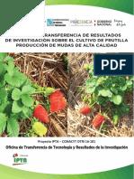 PUBLICACION  - MUDA DE FRUTILLA  23-07-2019-final (8)