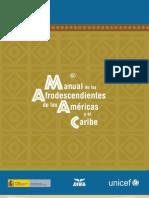 Manual de los afrodescendientes