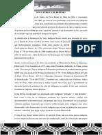 NOTA PÚBLICA DE REPÚDIO - indígenas de alter do chão