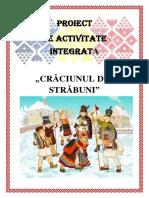 proiect IC2 RALUCA VADANOIU pdf