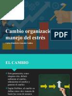3.5. Cambio Organizacional