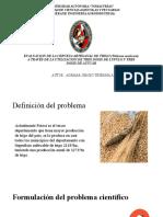 Evaluacion de La Cerveza Artesanal de Trigo Dispositivas