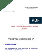 PRINCIPIOS RECTORES DEL SA