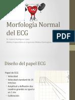 6. Morfología Normal Del ECG