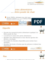Diaporama Poulet de Chair