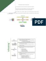 Metodologías para el desarrollo de Aplicaciones Web