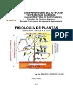 Fisiologia de plantas