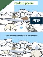 RO T T 4798 Winter Arctic Animals Habitat Powerpoint Romanian