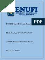 ENSAYO TIC ERA DIGITAL SEYLER JOAQUIN 1° C