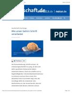 Wie unser Gehirn Schrift verarbeitet - wissenschaft.de