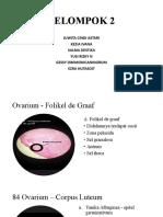 histologi kelompok 2