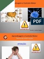 ACM Cap. 2.2- Atenção e Memoria