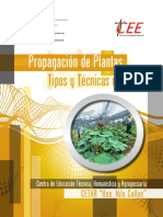 Plant as Baja
