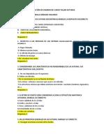Examen de Curso Taller Sutura -Sofia Sánchez Yallerco