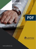 Guía de auditoría forense en el hurto de efectivo