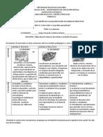 Ejercicio Individual de Diseño de Evaluación