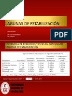 LAGUNAS FACULTATIVAS_CURSO UNI.31.01.21