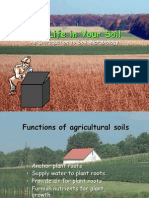 Introduction to Soil Microbiology