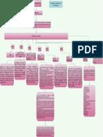 Mapa Conceptual Acuerdo 042 Del 2002 Maria Camila Ordoñez Sarria PDF