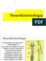 NEUROKINESIOLOGIA_2010