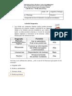 biologia 10º diagnosnico YERLIS SALAS