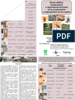 Soil Fauna Pamphlet
