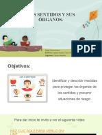 PPT-Ciencias-N.-1-Básico-Sentidos-S3