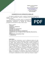 DIAGNOSTICO DE COJERAS
