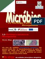 1.2- Morfologia e estrutura de Microrganismos