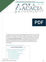 Contenedores Marítimos_ historia, función y optimización - AcaciaTEC