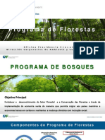 CT Melhoramento da Ecoeficiencia da Industria Florestal VF