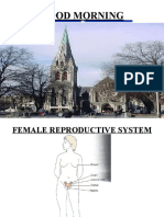 THE FEMALE  rEPRODUCTIVE SYSTEM final