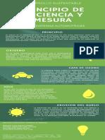 Infografia Principio de eficiencia y mesura