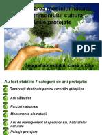 Conservarea mediului natural şi a patrimoniului cultural clasa 12