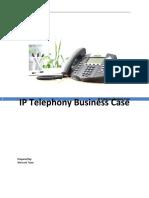 IP Telephony business case