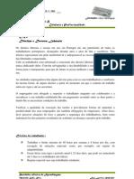 DR2 Direitos Laborais.doc