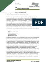 DR4 Direitos e deveres na comunidade global)