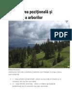 Clasificarea poziţională şi calitativă a arborilor