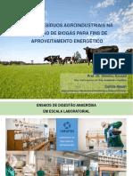 USO DE RESÍDUOS AGROINDUSTRIAIS NA GERAÇÃO DE BIOGÁS PARA FINS DE APROVEITAMENTO ENERGÉTICO