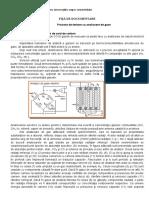 FIȘĂ de DOCUMENTARE-Procese de Testare Cu Analizoare de Gaze